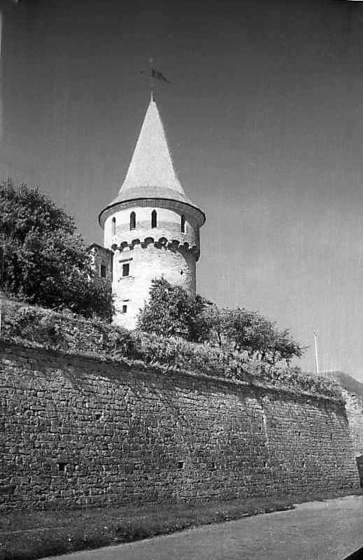 1996 р. Стіна північного двору і башта Рожанка. Вигляд з північного сходу