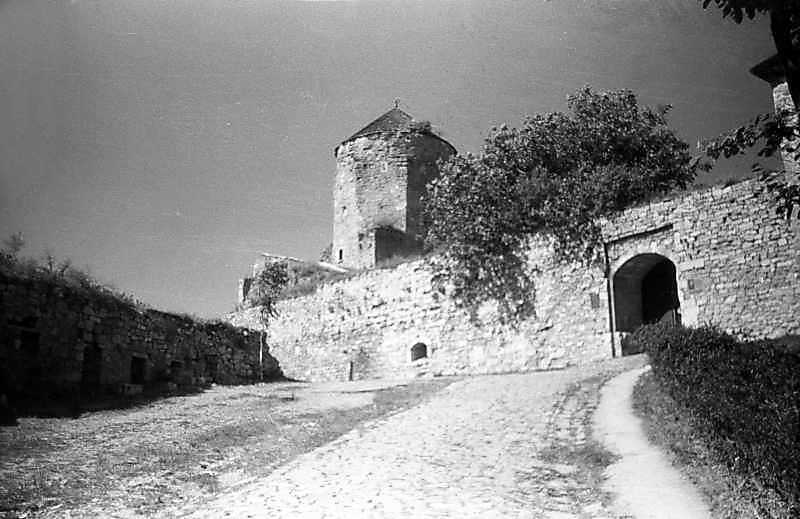 1996 р. Східна стіна з брамою. Вигляд з північного сходу