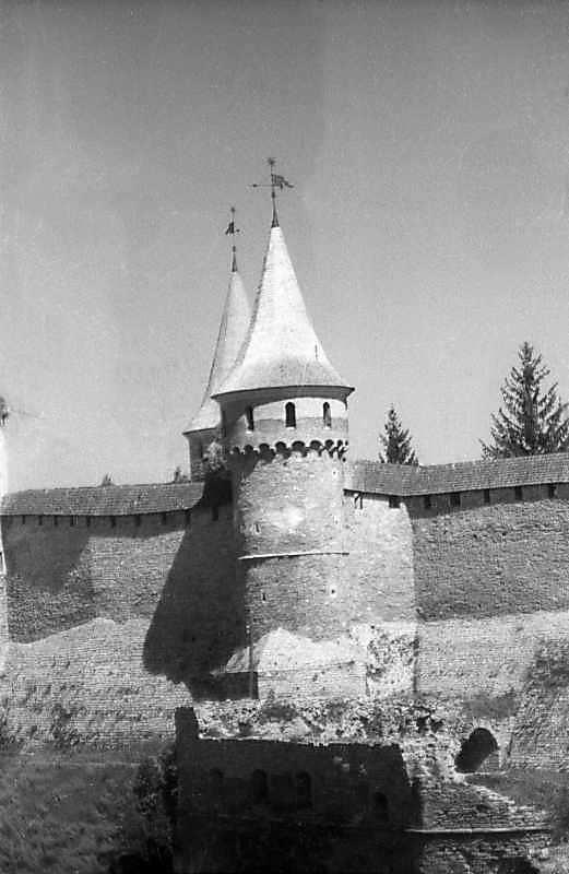 1996 р. Башти Тенчинська та Рожанка.…