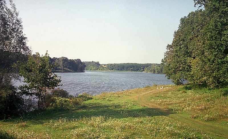 Качанівський парк