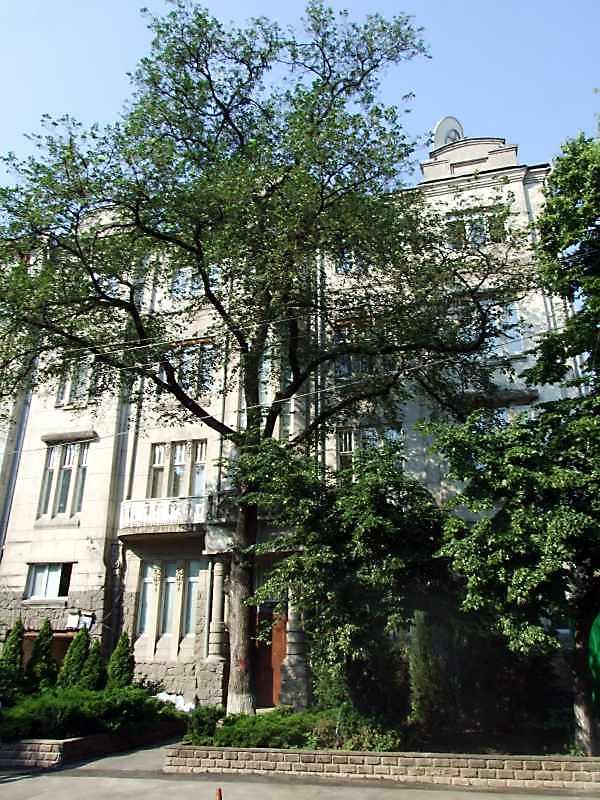 Будинок по вул.Назарівській, 21 в…