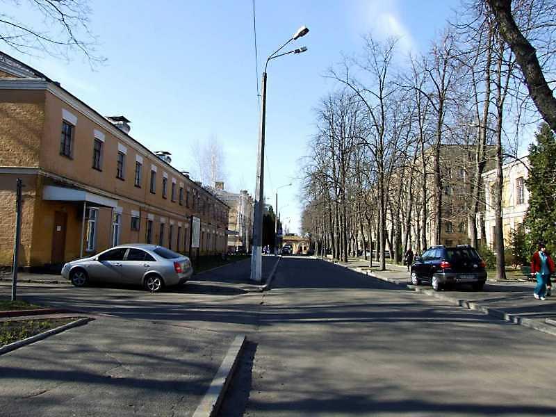 2009 р. Перспектива головної алеї від пам'ятника І.Павлову на північ