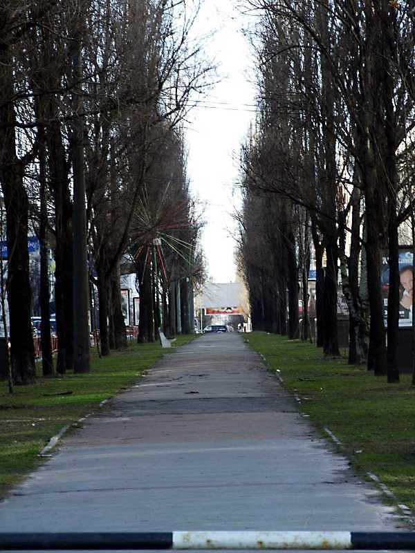 2009 р. Перспектива від вул. Кутузова в бік вул. Басейної