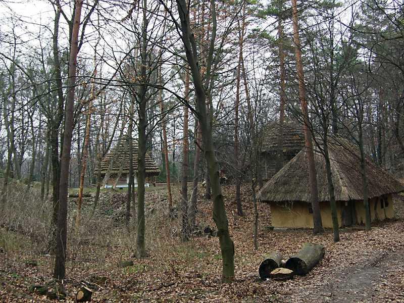2012 р. Фрагмент зони «Буковина»