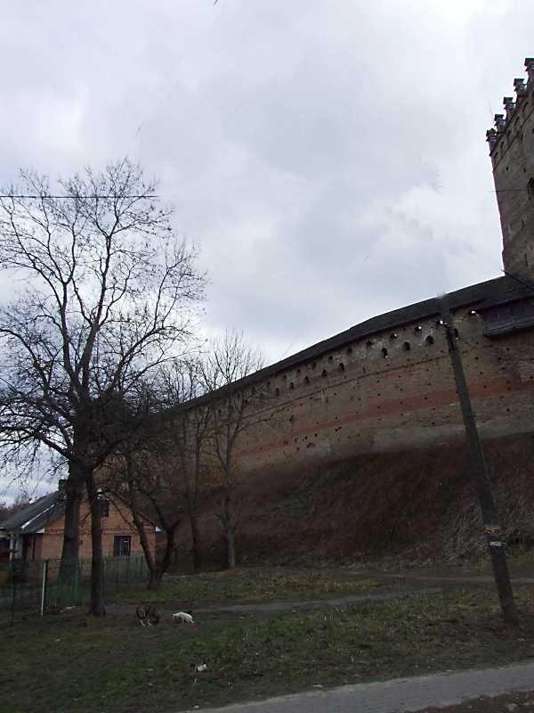 Владична башта і північний мур