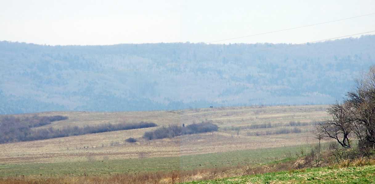 2013 р. Панорама долини й лісу з…