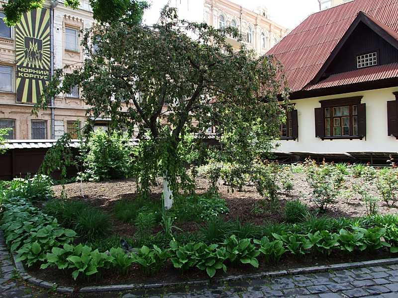 2015 р. Фрагмент садика й будинку