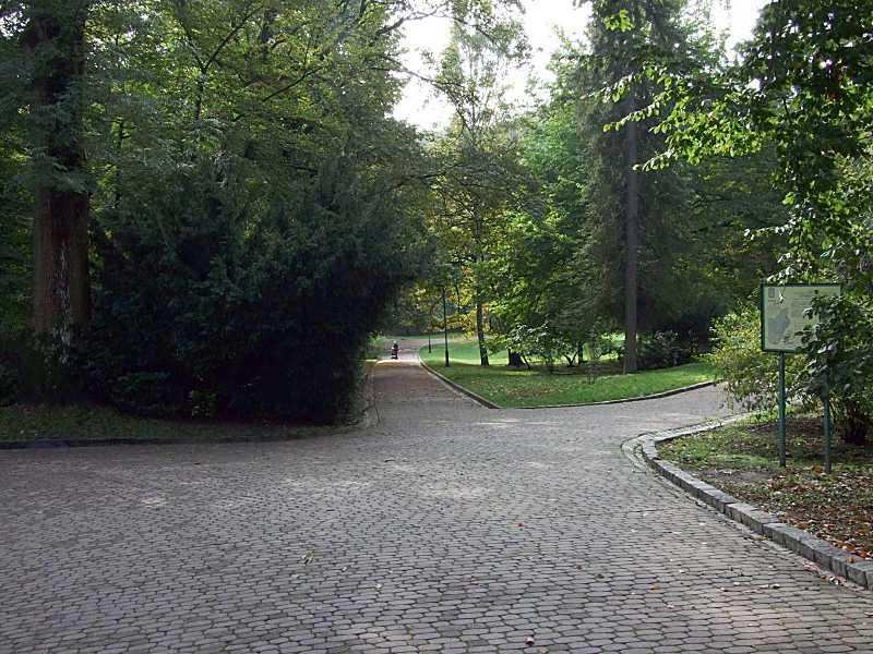 2019 р. Вхід до парку з боку вул.…
