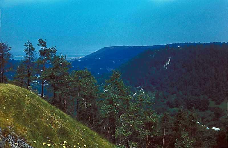 1977 р. Вид з вершини Замкової гори на північ