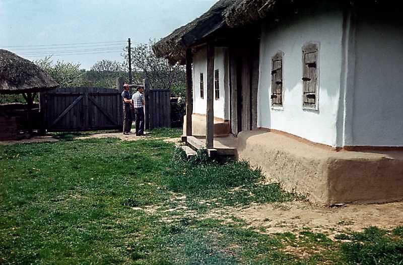 1977 р. Криниця, брама, чільний фасад хати. Вигляд з боку двора