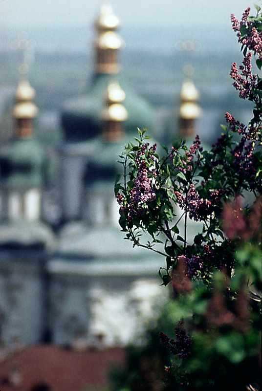1978 р. Квіти бузку на тлі собору