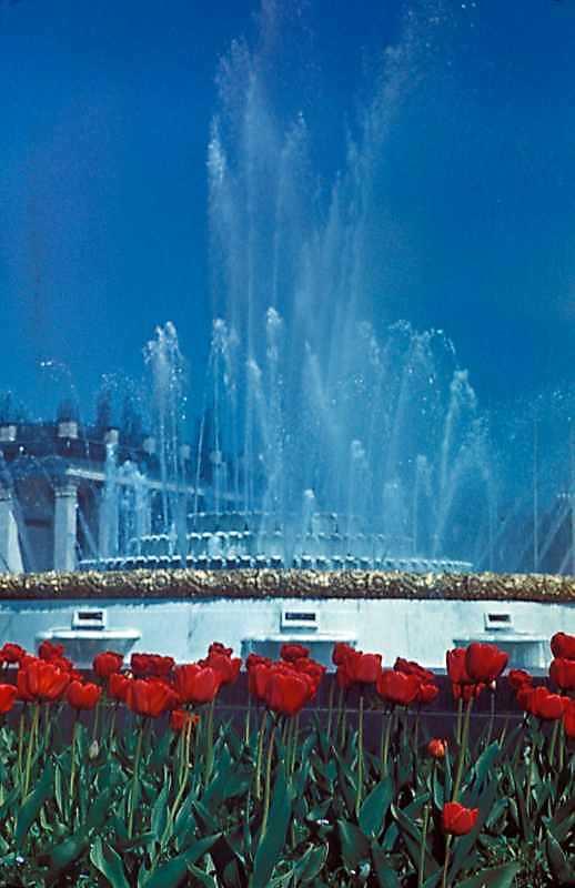1977 р. Головний фонтан на тлі…