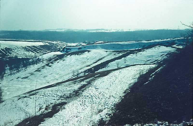1978 р. Ескарп Хотівського городища.…
